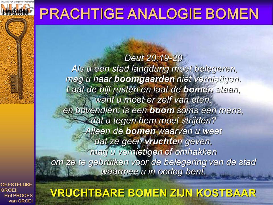 PRACHTIGE ANALOGIE BOMEN Deut 20:19-20 Als u een stad langdurig moet belegeren, Als u een stad langdurig moet belegeren, mag u haar boomgaarden niet v