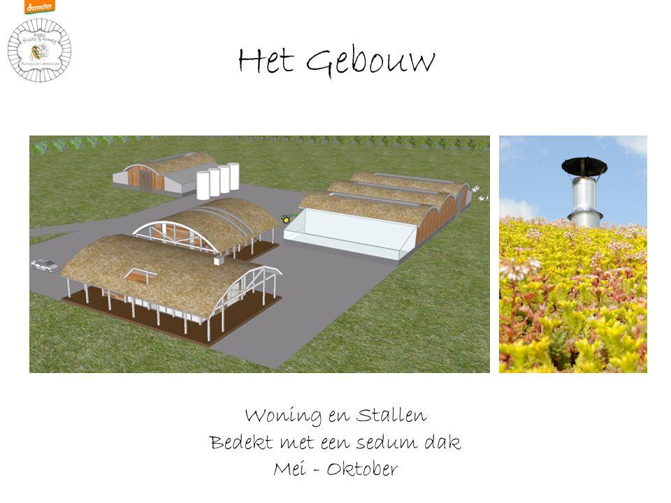 Het Gebouw Woning en Stallen Bedekt met een sedum dak Mei - Oktober