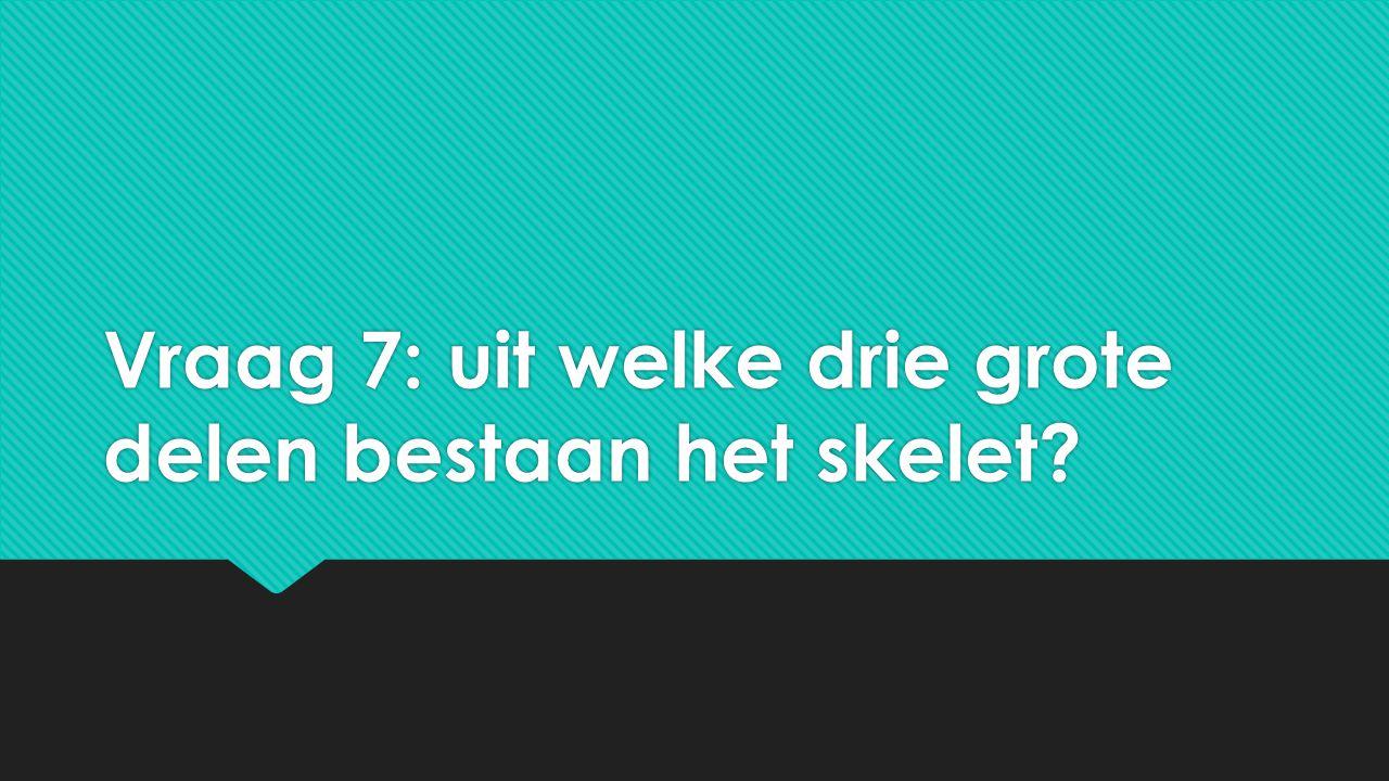 Vraag 7: uit welke drie grote delen bestaan het skelet?