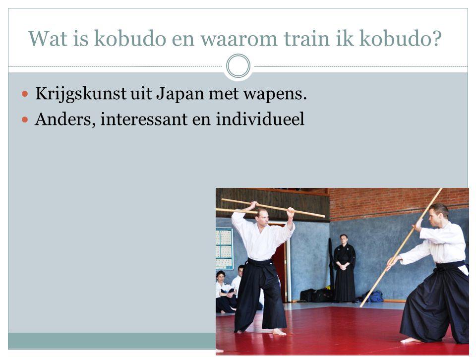 Wat is kobudo en waarom train ik kobudo? Krijgskunst uit Japan met wapens. Anders, interessant en individueel