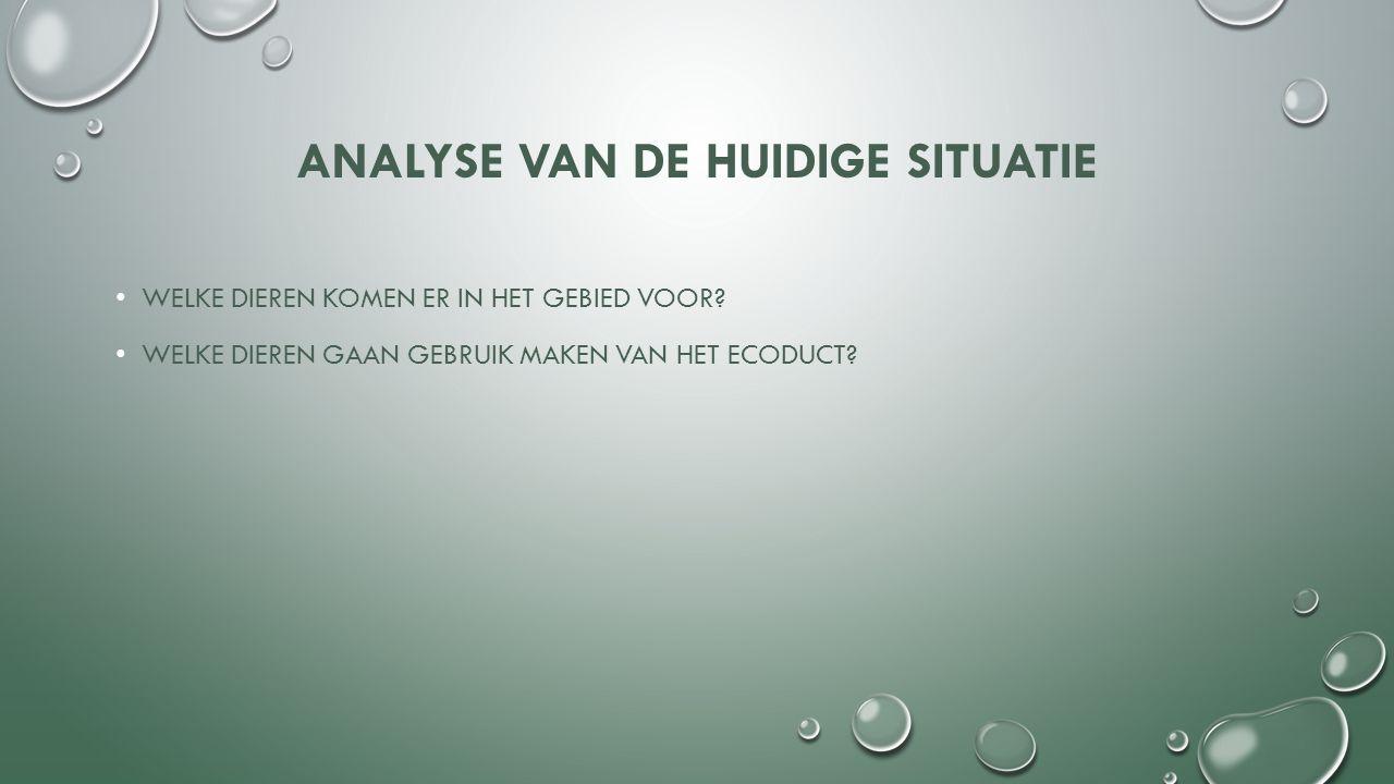 BESTAANDE ECODUCTEN Ecoduct Hoog-Buurlo; Pluspunten -.