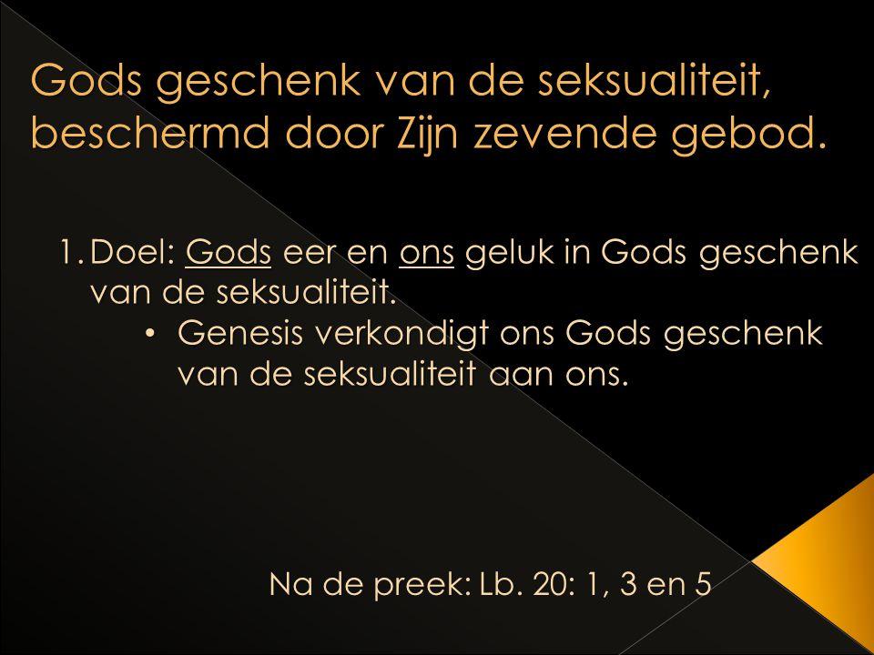 Gods geschenk van de seksualiteit, beschermd door Zijn zevende gebod.
