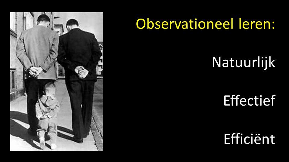 Observationeel leren: Natuurlijk Effectief Efficiënt