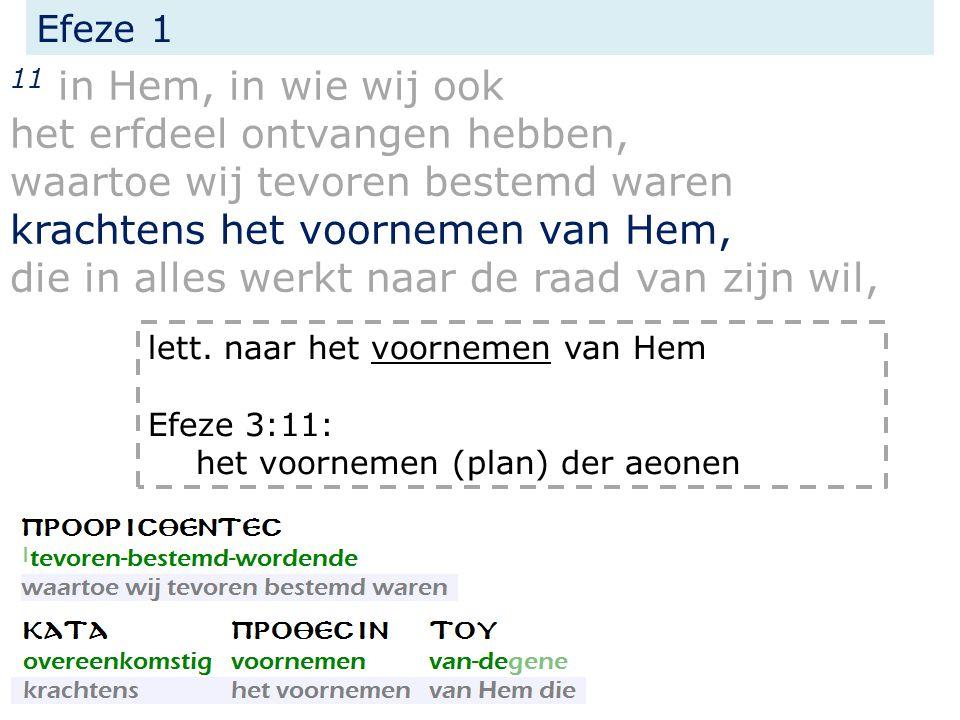 11 in Hem, in wie wij ook het erfdeel ontvangen hebben, waartoe wij tevoren bestemd waren krachtens het voornemen van Hem, die in alles werkt naar de raad van zijn wil, Efeze 1 lett.