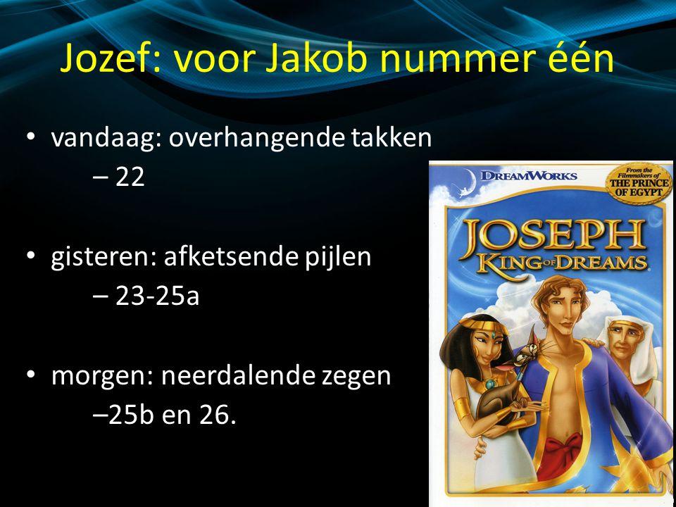 Jozef: voor Jakob nummer één vandaag: overhangende takken – 22 gisteren: afketsende pijlen – 23-25a morgen: neerdalende zegen –25b en 26.