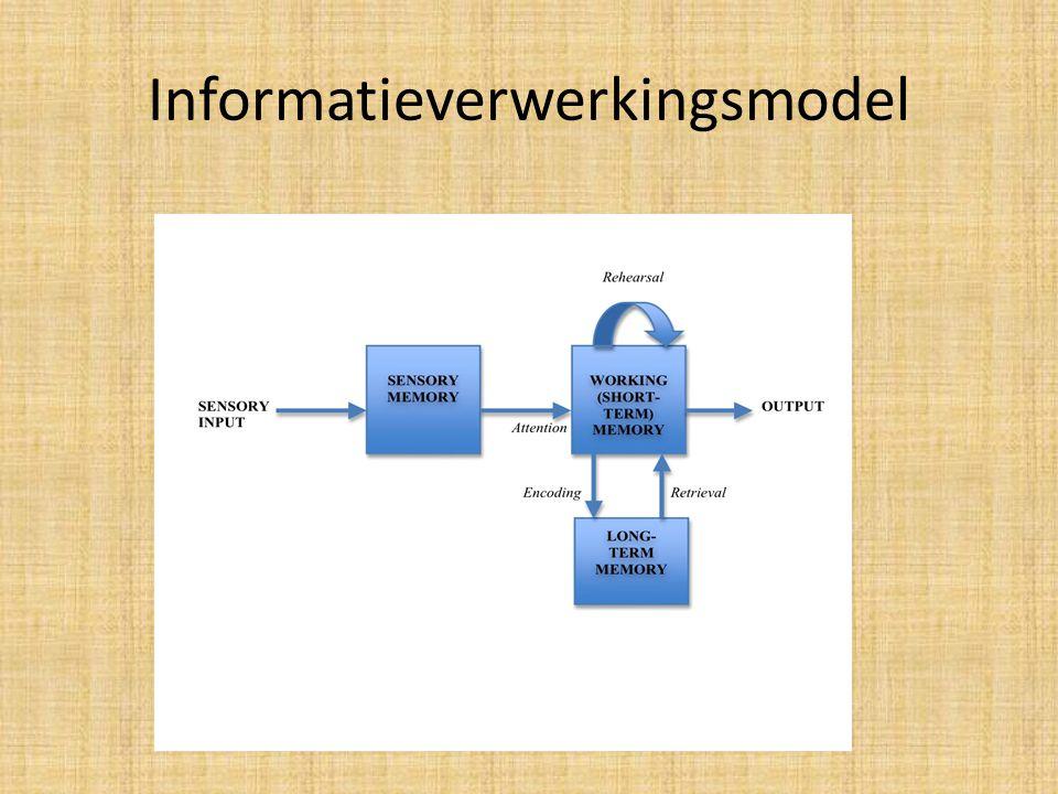 Informatieverwerkingsmodel