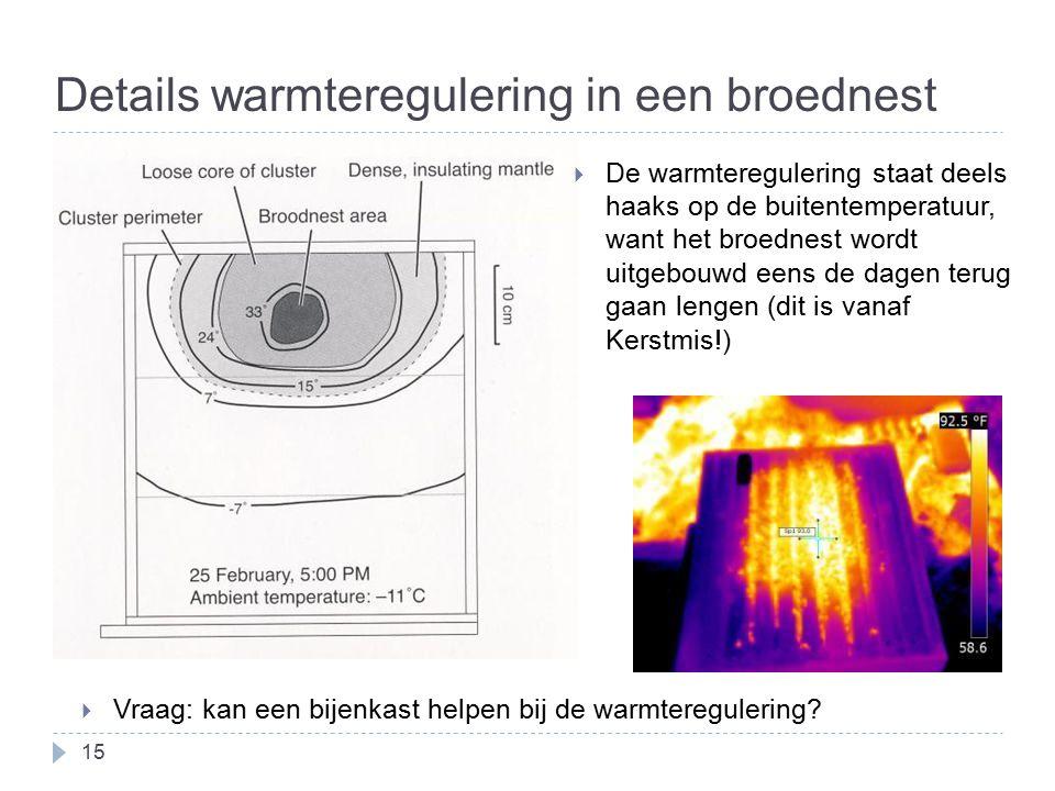 Details warmteregulering in een broednest  Vraag: kan een bijenkast helpen bij de warmteregulering.