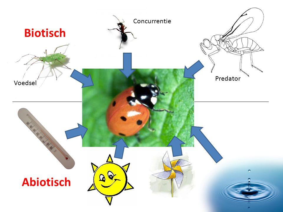 Biotisch Abiotisch Predator Voedsel Concurrentie