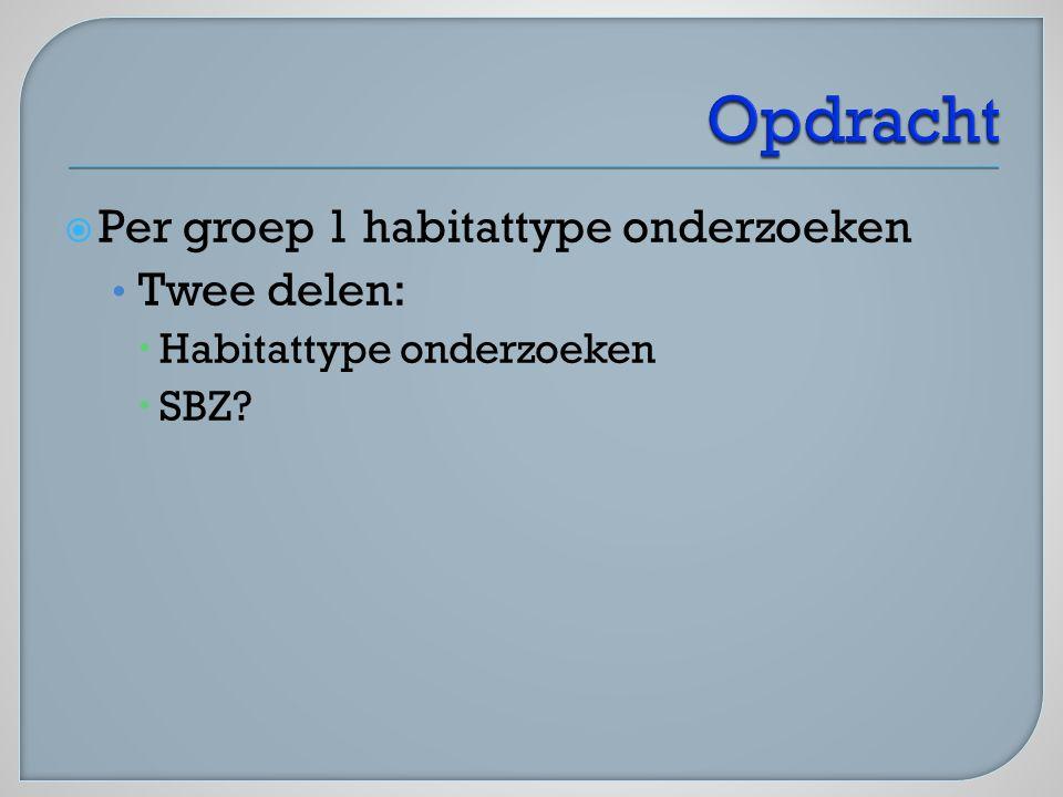  Per groep 1 habitattype onderzoeken Twee delen:  Habitattype onderzoeken  SBZ?