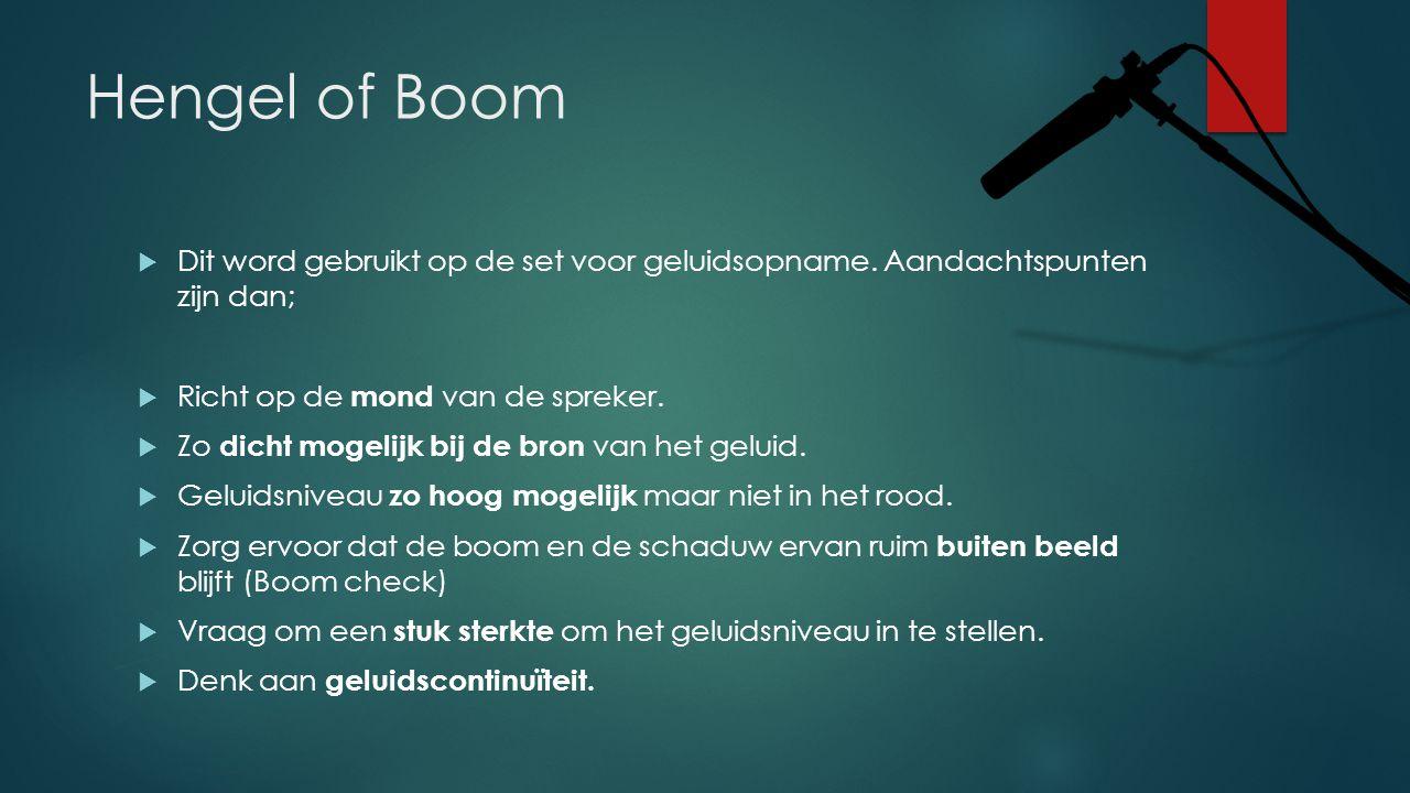 Hengel of Boom  Dit word gebruikt op de set voor geluidsopname. Aandachtspunten zijn dan;  Richt op de mond van de spreker.  Zo dicht mogelijk bij