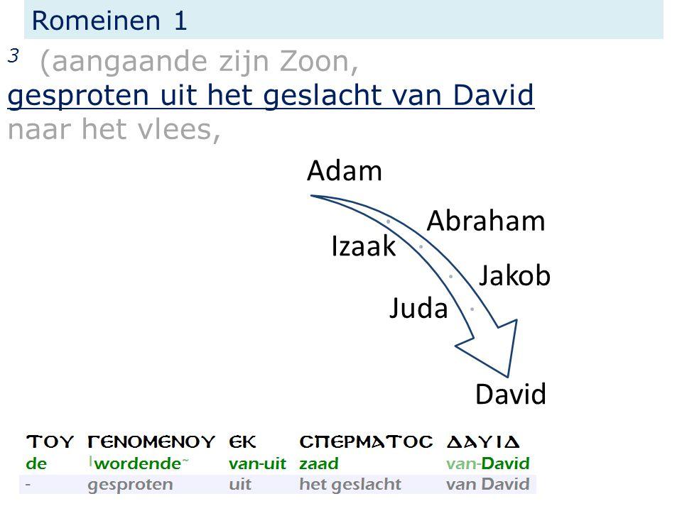 Romeinen 1 3 (aangaande zijn Zoon, gesproten uit het geslacht van David naar het vlees, Adam Abraham Izaak Jakob Juda David