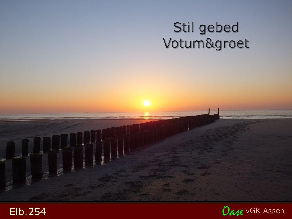 vGK Assen Oase Elb.254
