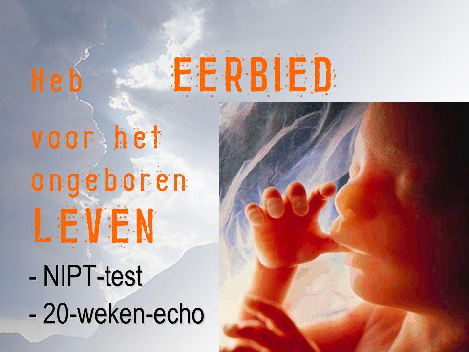 - NIPT-test - 20-weken-echo Heb EERBIED voor het ongeboren LEVEN - NIPT-test - 20-weken-echo