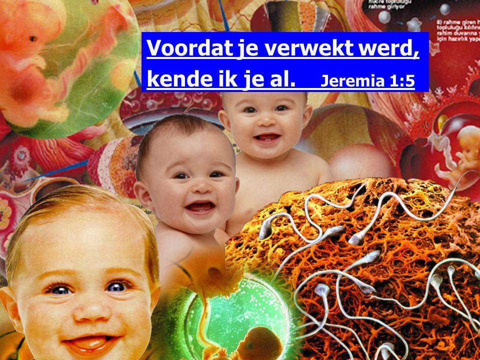 Voordat je verwekt werd, kende ik je al. Jeremia 1:5