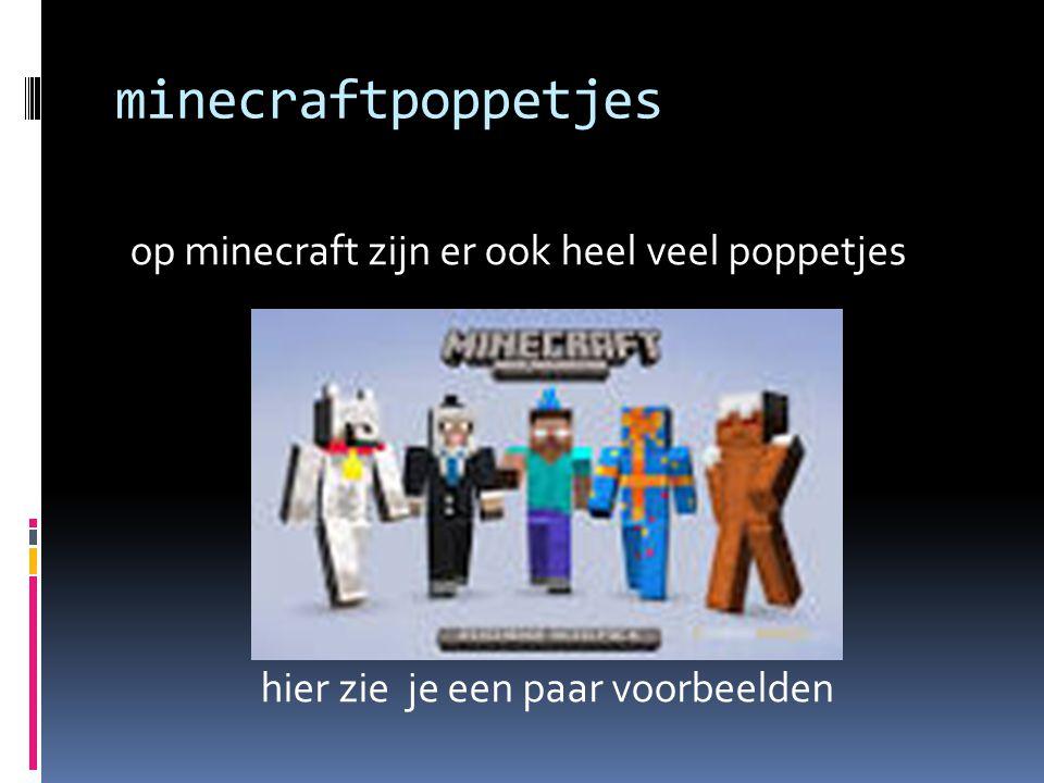 minecraftpoppetjes op minecraft zijn er ook heel veel poppetjes hier zie je een paar voorbeelden