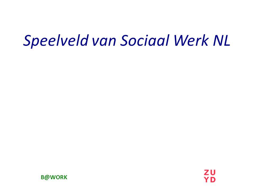 Speelveld van Sociaal Werk NL B@WORK