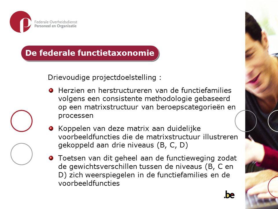 Drievoudige projectdoelstelling : Herzien en herstructureren van de functiefamilies volgens een consistente methodologie gebaseerd op een matrixstruct