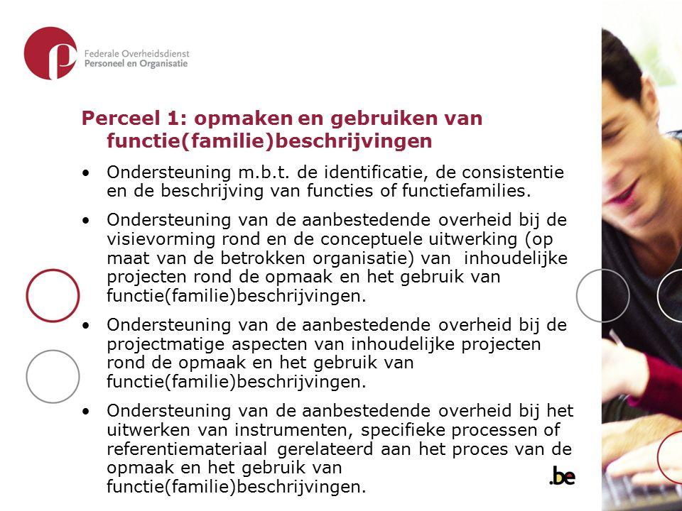 Perceel 1: opmaken en gebruiken van functie(familie)beschrijvingen Ondersteuning m.b.t. de identificatie, de consistentie en de beschrijving van funct