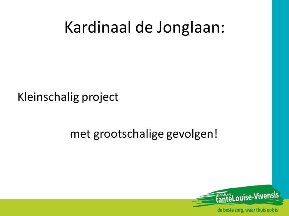 Kardinaal de Jonglaan: Kleinschalig project met grootschalige gevolgen!