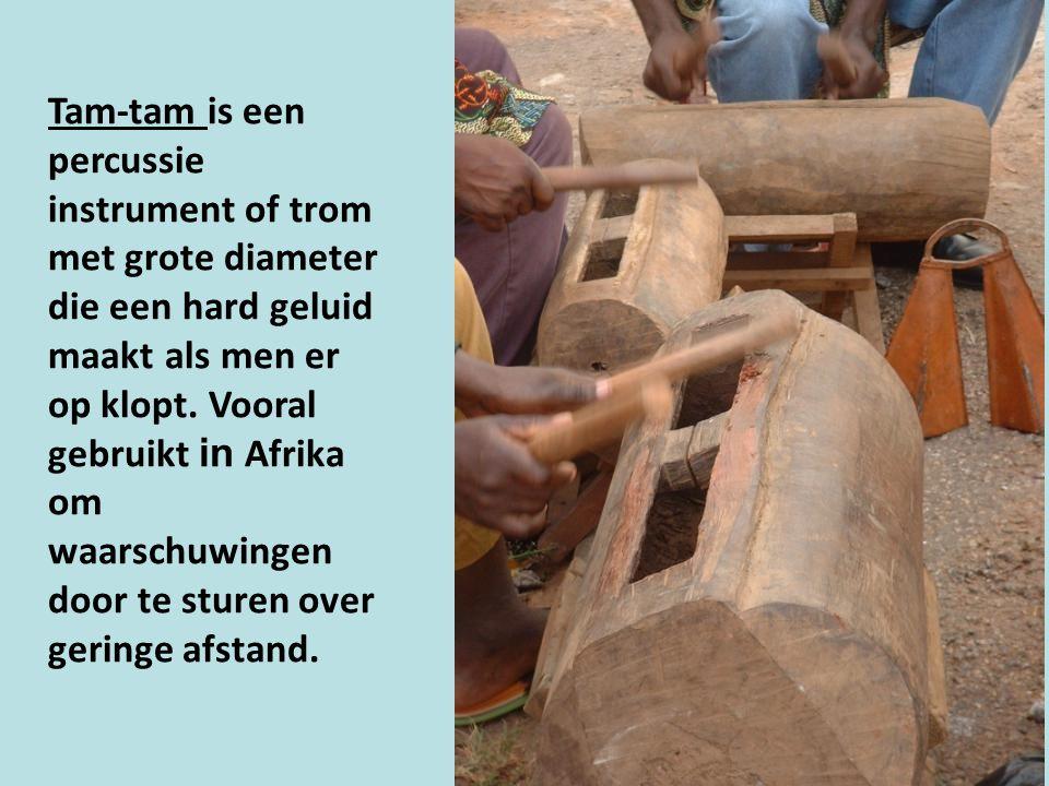 Tam-tam is een percussie instrument of trom met grote diameter die een hard geluid maakt als men er op klopt.