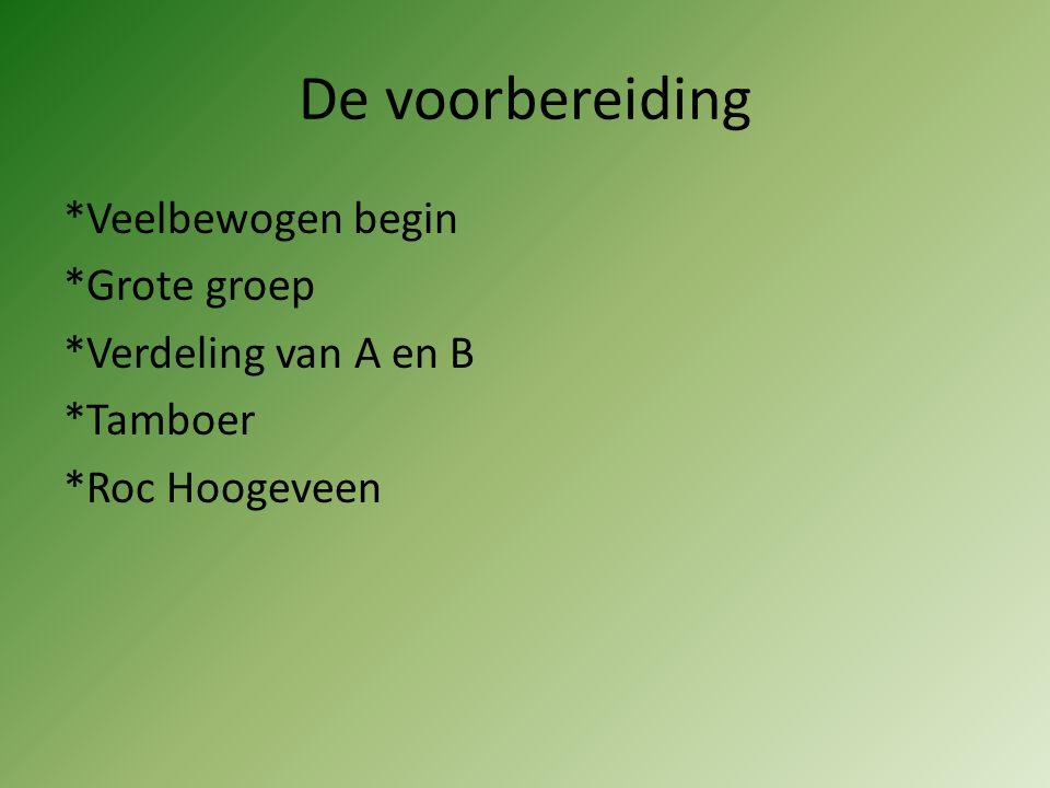 De voorbereiding *Veelbewogen begin *Grote groep *Verdeling van A en B *Tamboer *Roc Hoogeveen