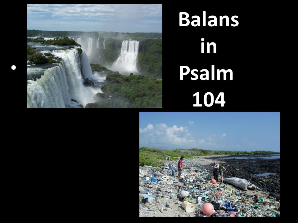 Balans in Psalm 104