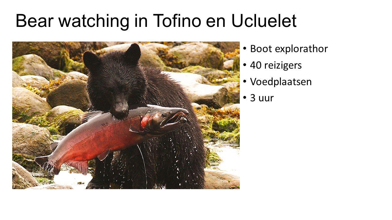 Bear watching in Tofino en Ucluelet Boot explorathor 40 reizigers Voedplaatsen 3 uur