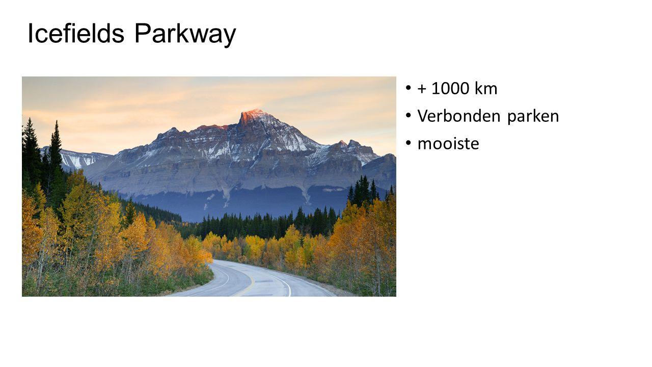 Icefields Parkway + 1000 km Verbonden parken mooiste