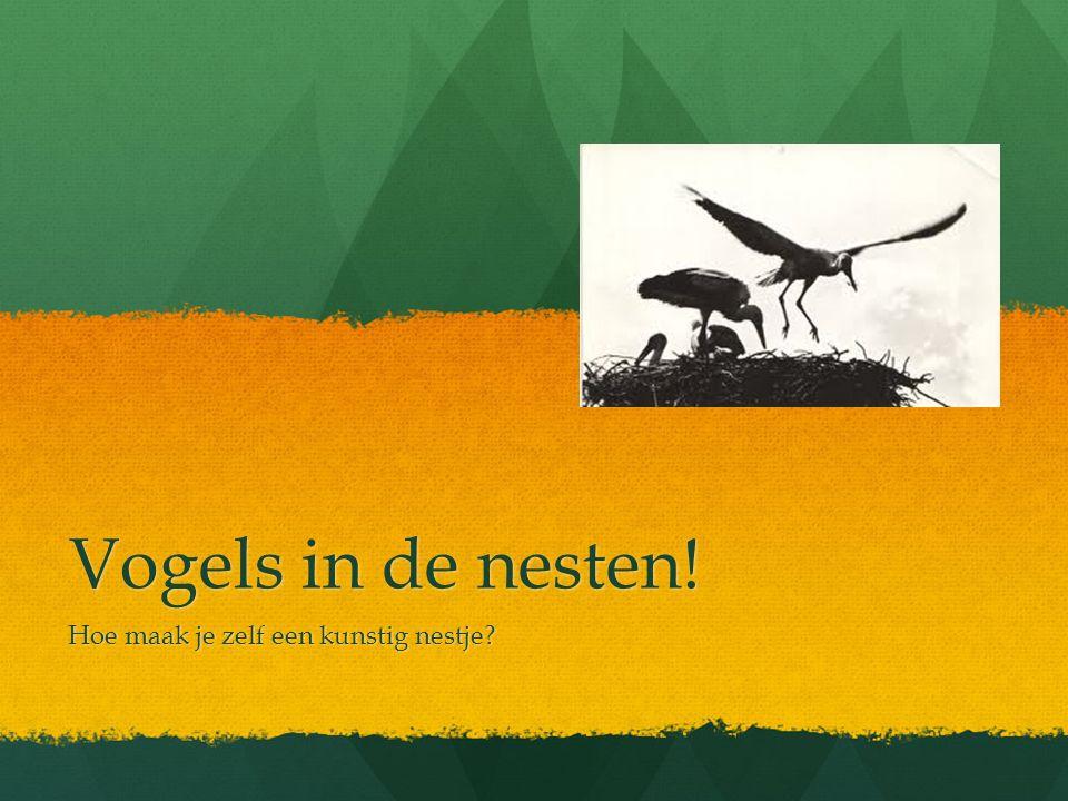 We kunnen de vogels helpen met… Nestkasten Nestkasten Drijvende eilandjes Drijvende eilandjes Ooievaarspalen Ooievaarspalen Heb jij nog ideeën.