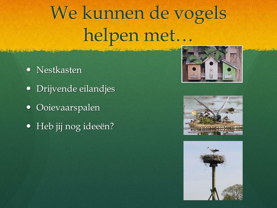 We kunnen de vogels helpen met… Nestkasten Nestkasten Drijvende eilandjes Drijvende eilandjes Ooievaarspalen Ooievaarspalen Heb jij nog ideeën? Heb ji