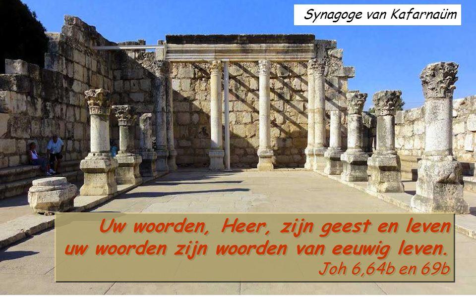 Ef 4,30-5,2 Broeders en zusters, wilt Gods heilige Geest niet bedroeven: gij zijt met zijn zegel gewaarmerkt voor de dag der verlossing.