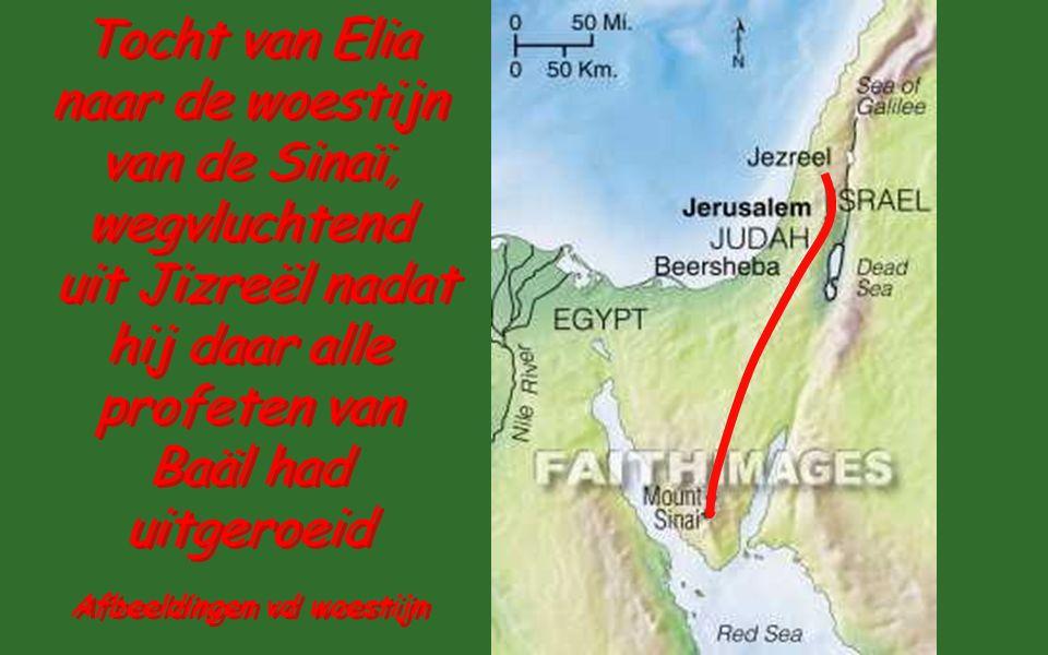 Tocht van Elia naar de woestijn van de Sinaï, wegvluchtend uit Jizreël nadat hij daar alle profeten van Baäl had uitgeroeid Tocht van Elia naar de woestijn van de Sinaï, wegvluchtend uit Jizreël nadat hij daar alle profeten van Baäl had uitgeroeid Afbeeldingen vd woestijn
