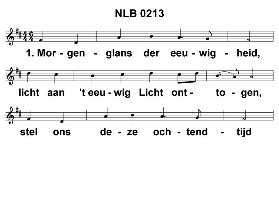 NLB 0213