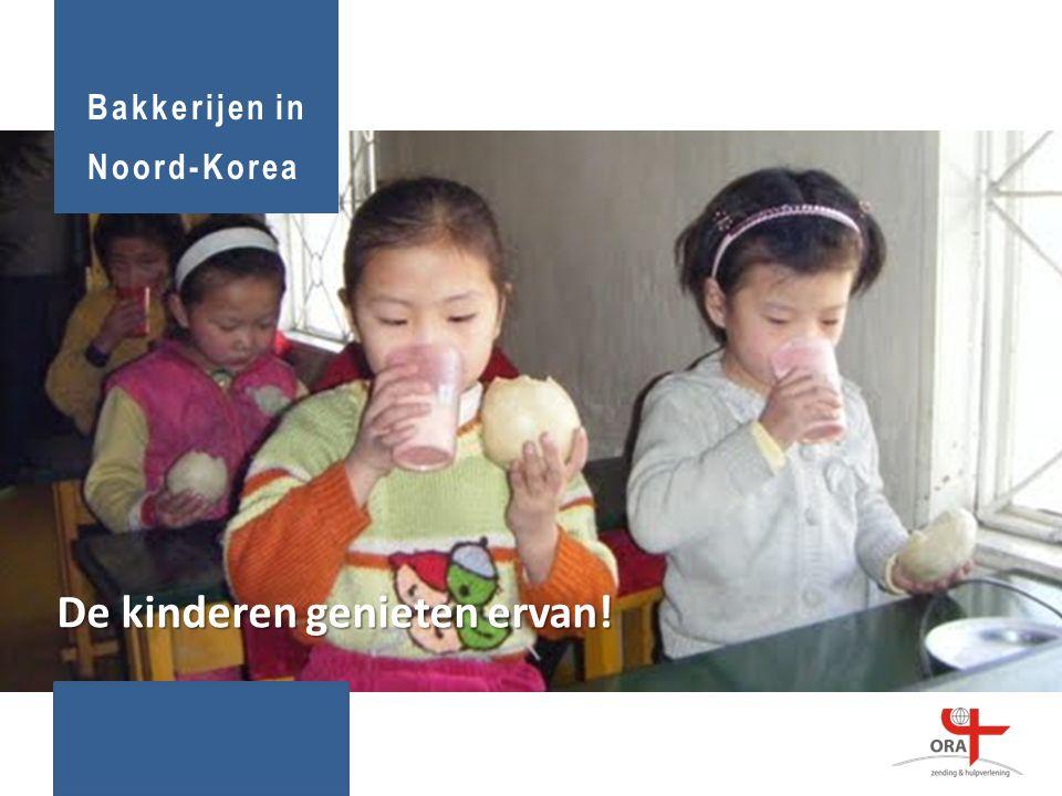 De kinderen genieten ervan! Bakkerijen in Noord-Korea