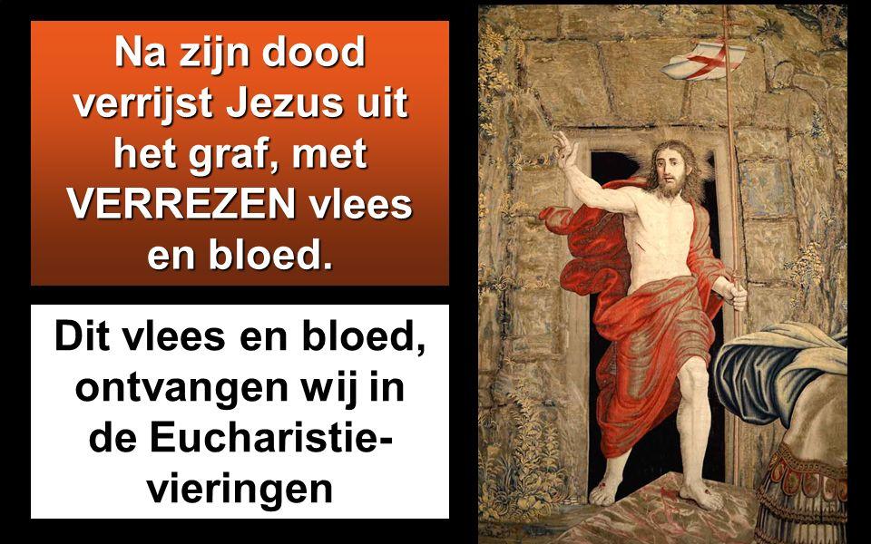 Joh 6,51-58 In die tijd zei Jezus tot de menigte: 'Ik ben het levende brood dat uit de hemel is neergedaald. Als iemand van dit brood eet, zal hij lev