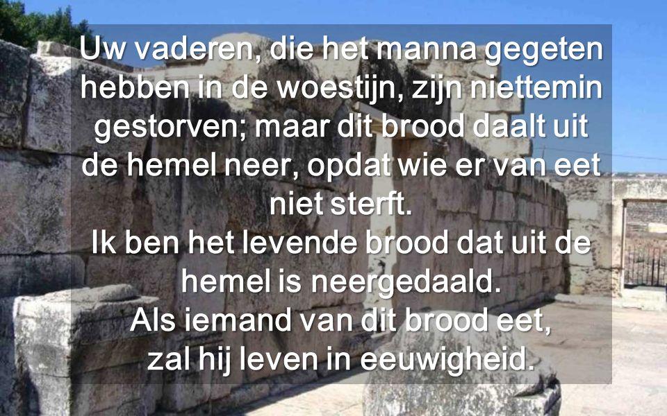 """""""Rijk, heeft God zich arm gemaakt zoals wij om ons te onderrichten van gelijke tot gelijke"""" St. Gregoius van Nazianze Alleen een wijsheid onderricht o"""