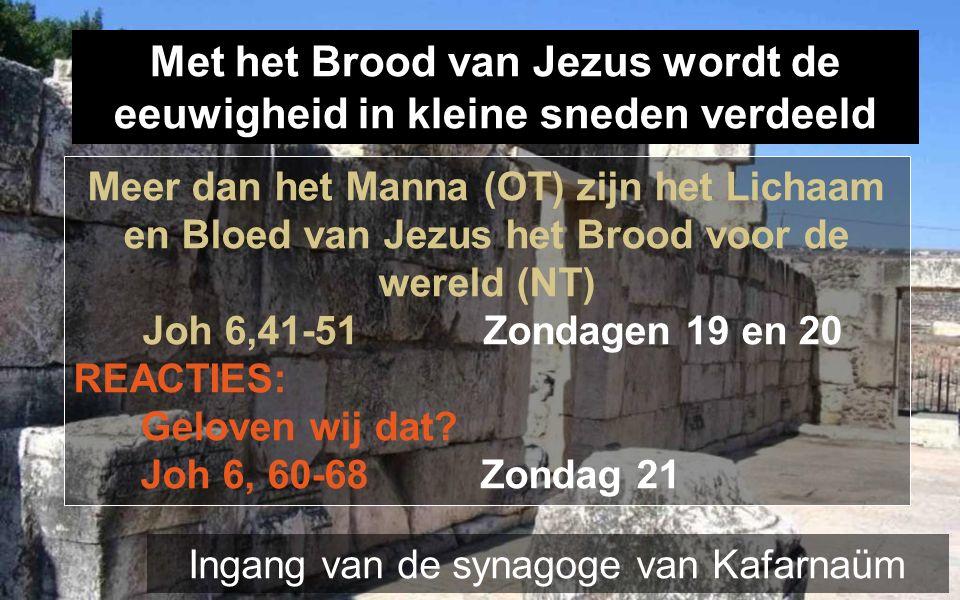 Met het Brood van Jezus wordt de eeuwigheid in kleine sneden verdeeld Meer dan het Manna (OT) zijn het Lichaam en Bloed van Jezus het Brood voor de wereld (NT) Joh 6,41-51 Zondagen 19 en 20 REACTIES: Geloven wij dat.