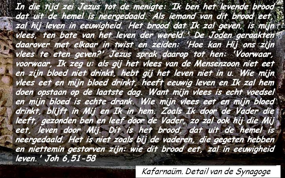 Geprezen zijt Gij, Vader van hemel en en aarde, omdat gij de geheimen van het koninkrijk aan kinderen geopenbaard hebt.