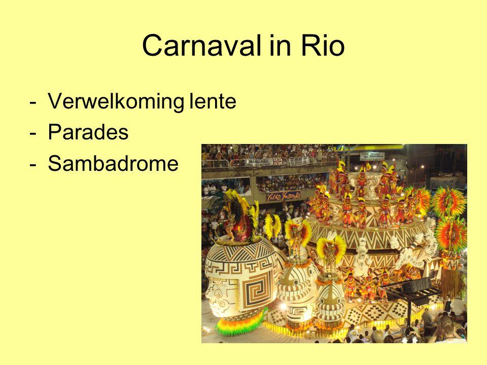 Carnaval in Rio -Verwelkoming lente -Parades -Sambadrome