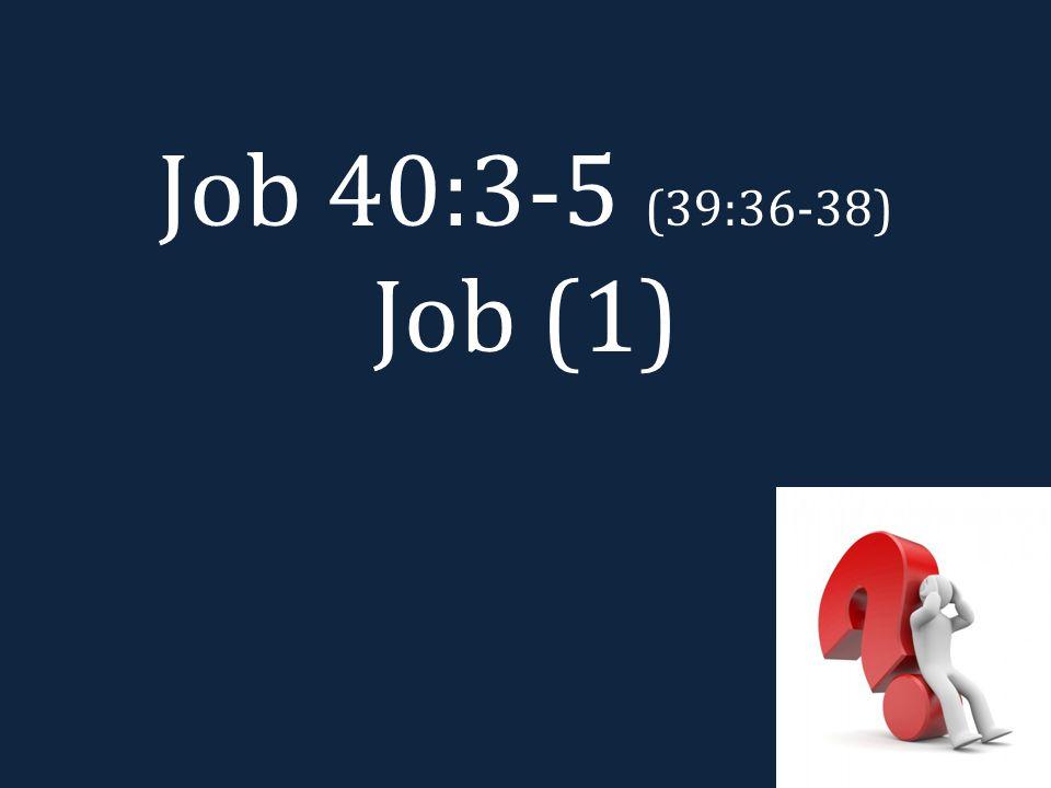 Job 40:3-5 (39:36-38) Job (1)