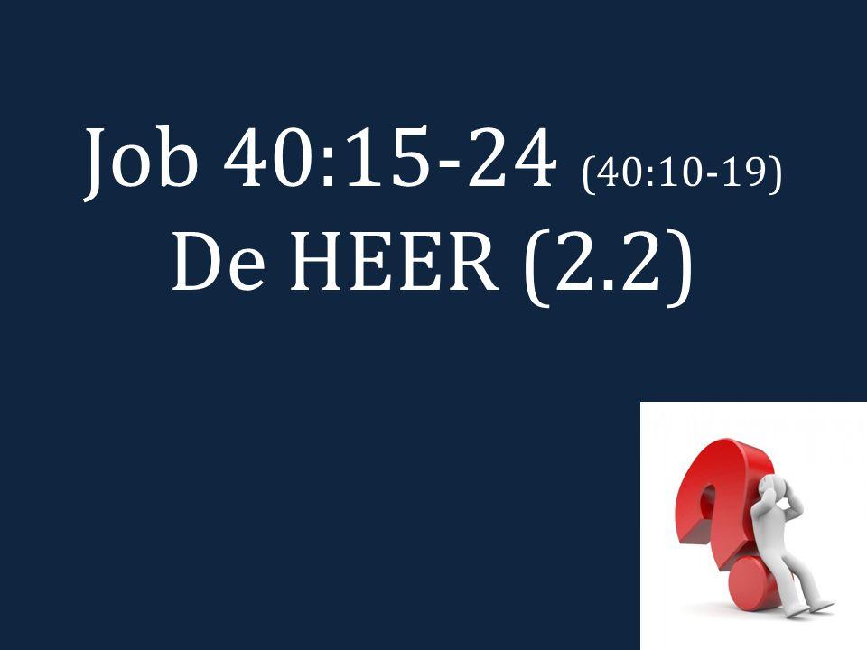Job 40:15-24 (40:10-19) De HEER (2.2)