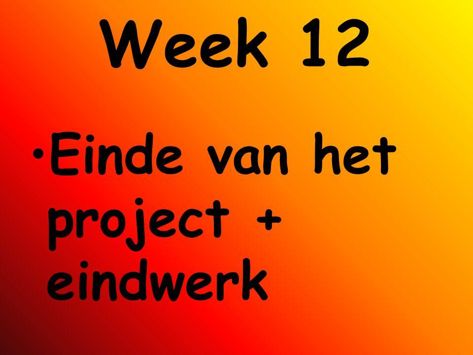 Week 12 Einde van het project + eindwerk