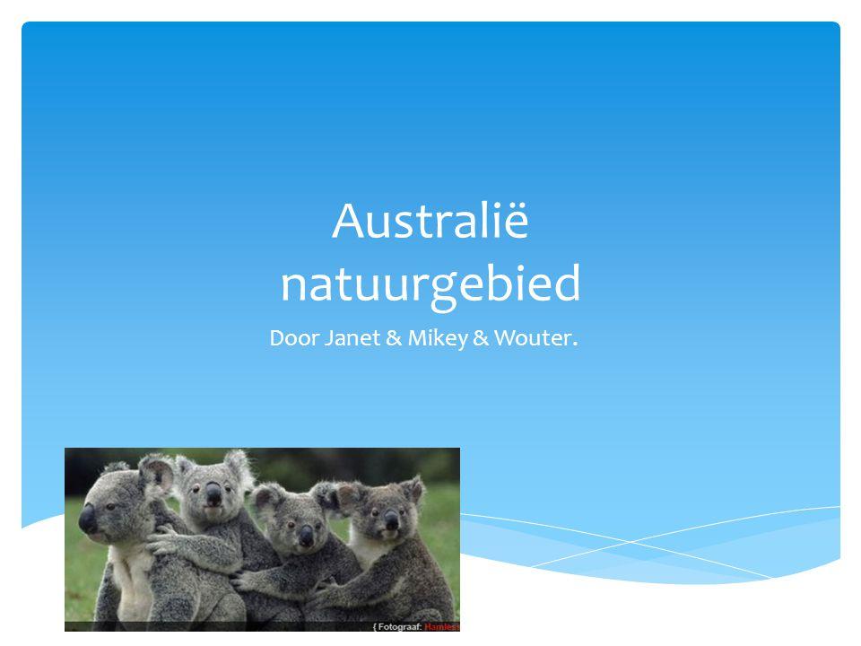 Australië natuurgebied Door Janet & Mikey & Wouter.
