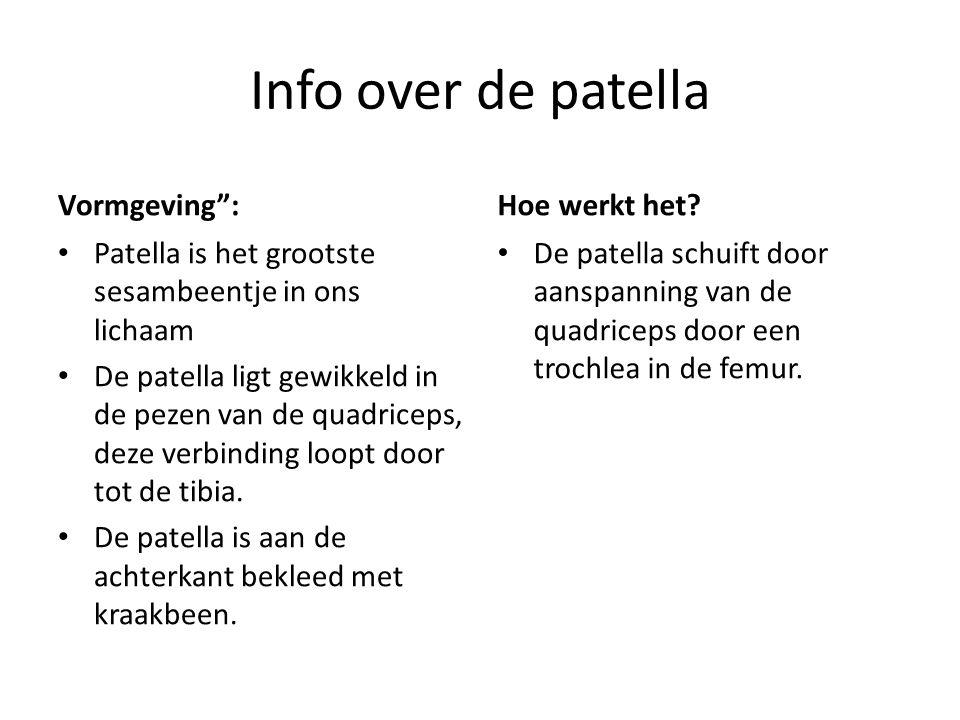 """Info over de patella Vormgeving"""": Patella is het grootste sesambeentje in ons lichaam De patella ligt gewikkeld in de pezen van de quadriceps, deze ve"""