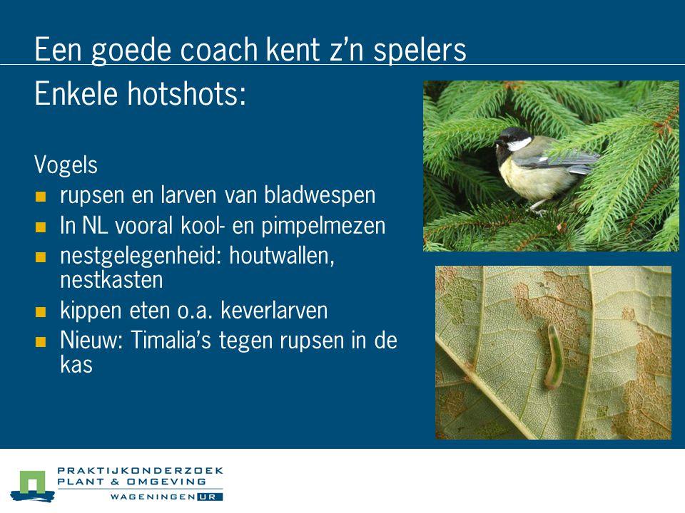 Een goede coach kent z'n spelers Enkele hotshots: Vogels rupsen en larven van bladwespen In NL vooral kool- en pimpelmezen nestgelegenheid: houtwallen