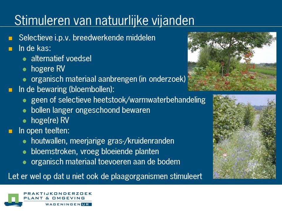 Stimuleren van natuurlijke vijanden Selectieve i.p.v. breedwerkende middelen In de kas: alternatief voedsel hogere RV organisch materiaal aanbrengen (