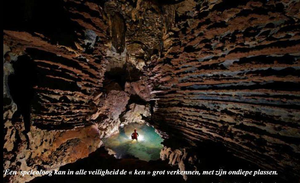 reuze stalactieten in de grot