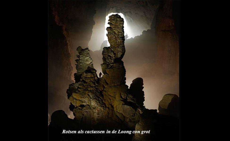 stalactieten in de grot