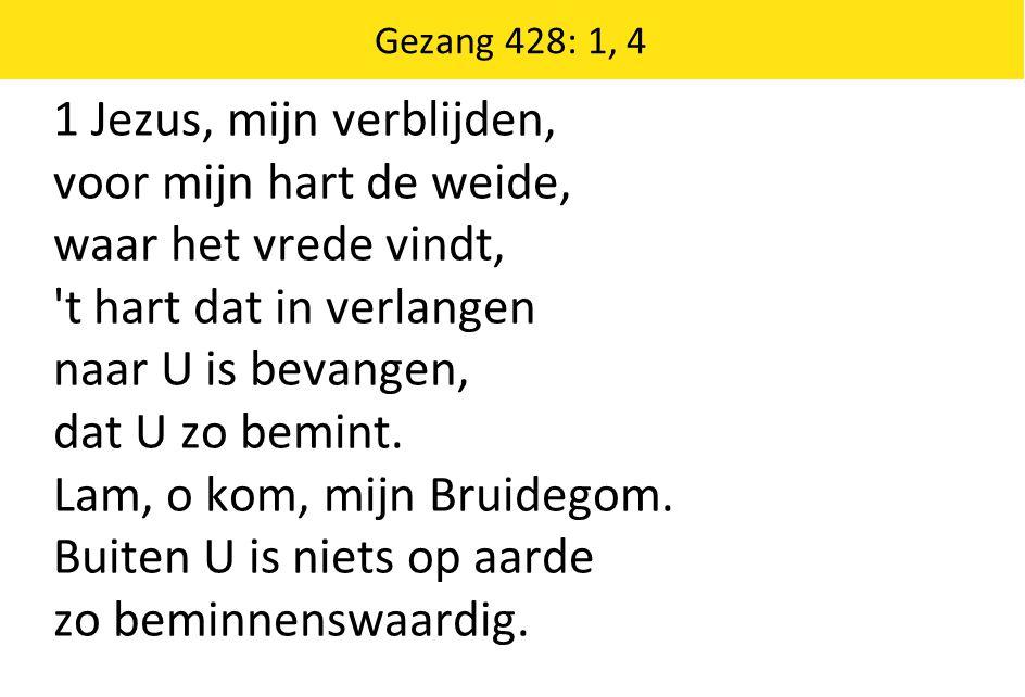 Gezang 428: 1, 4 1 Jezus, mijn verblijden, voor mijn hart de weide, waar het vrede vindt, t hart dat in verlangen naar U is bevangen, dat U zo bemint.