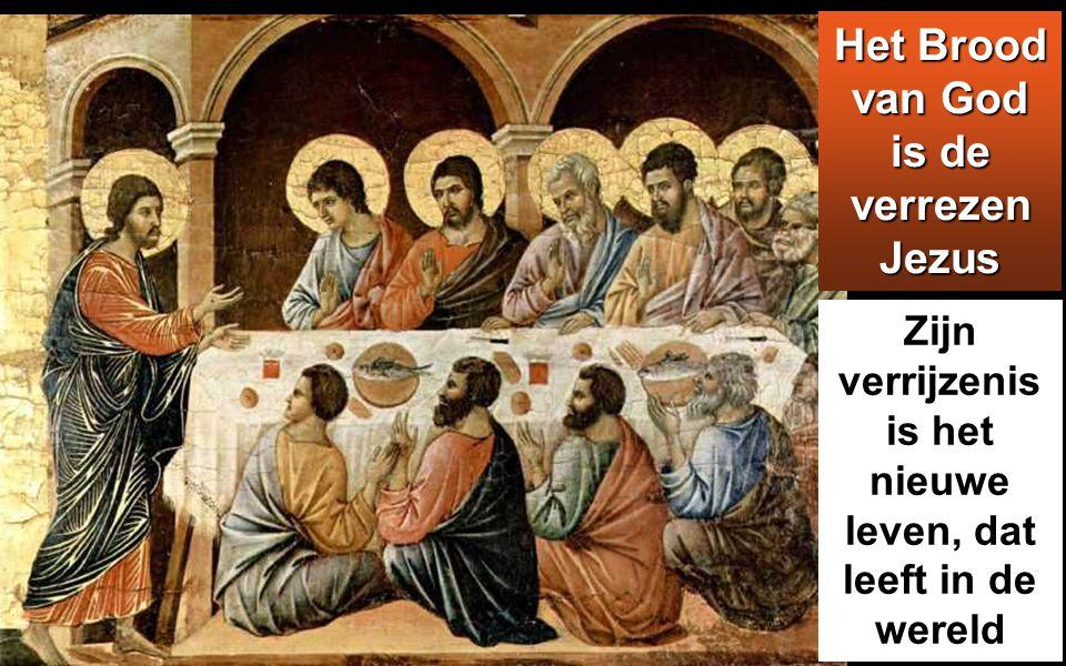 want het brood van God daalt uit de hemel neer en geeft leven aan de wereld.'
